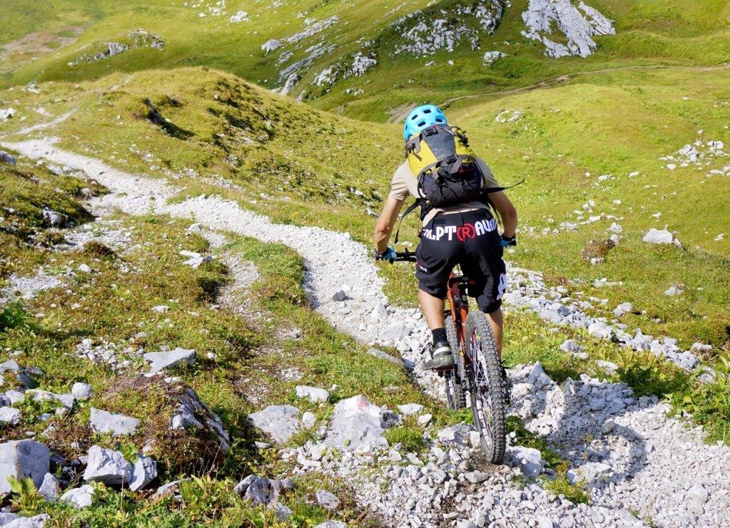 Auch lange Abfahrten in den Alpen bringen sie nicht zum kochen.